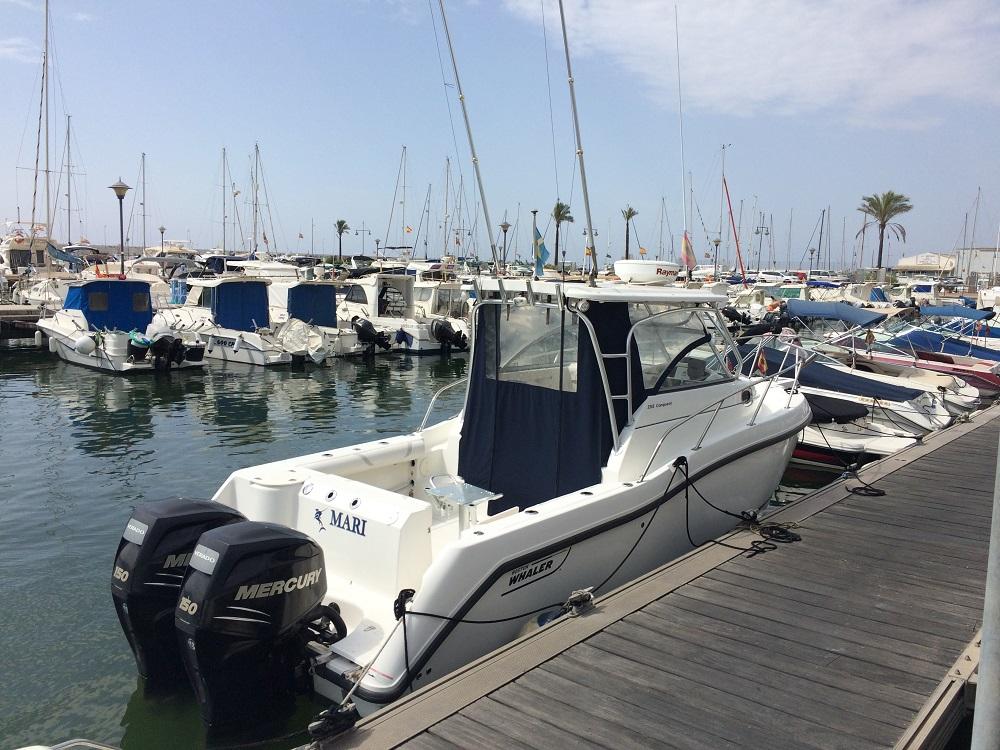 Яхта Boston Whaler 255 CQ | ID: 14356